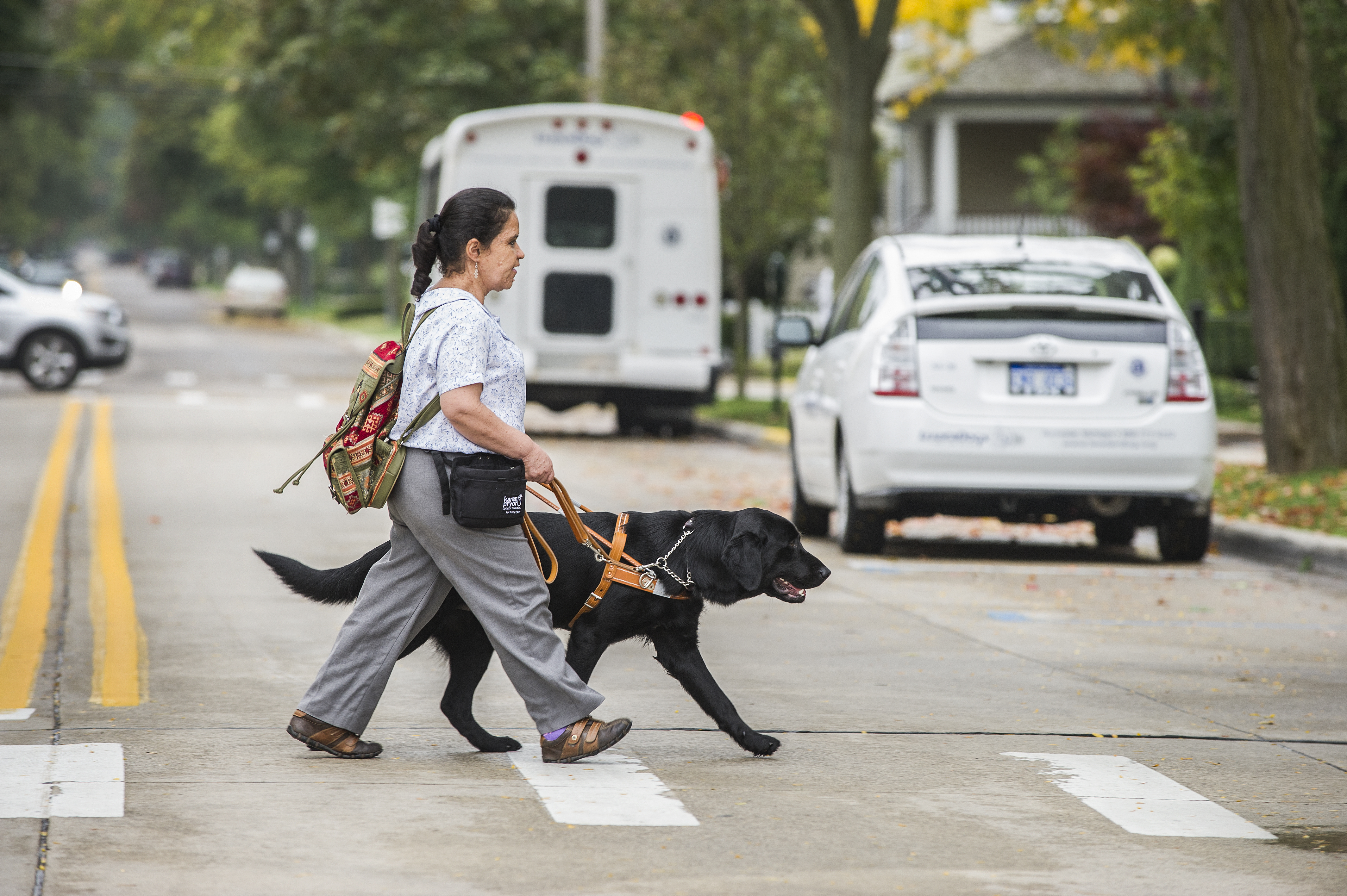 A woman using a black guide dog in harness is crossing the street in a crosswalk.